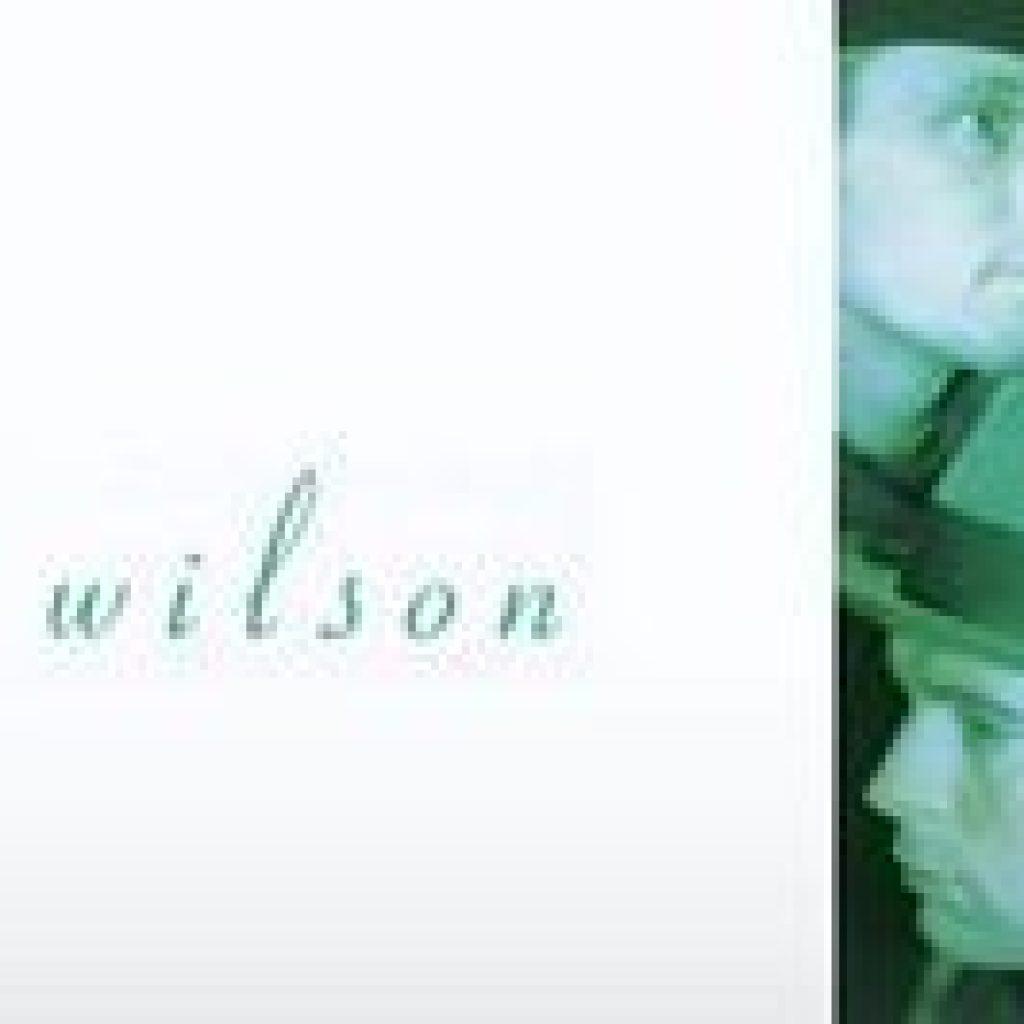 Danny Wilson & Gary Clark