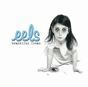 Eels BF