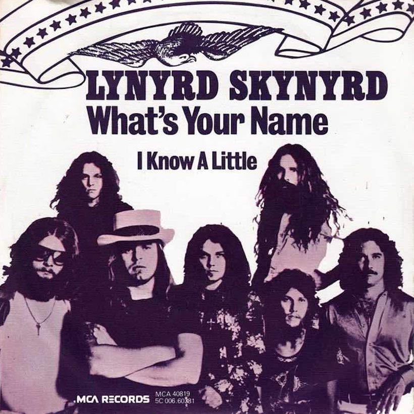 Lynyrd Skynyrd Whats Your Name