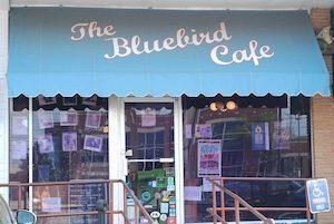 nashville bluebird