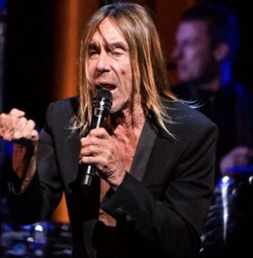 So What Makes Iggy Pop Iconic?