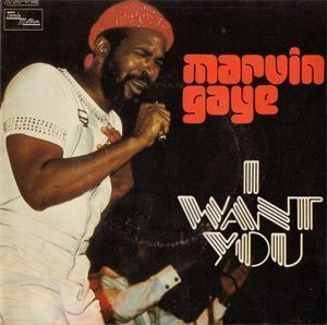 Marvin Gaye I Want You Single Picture Sleeve