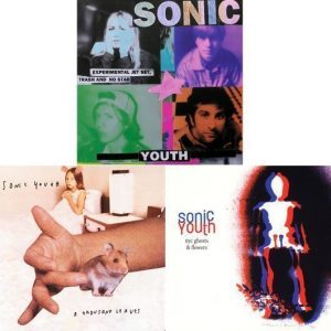 Sonic Youth - Experimental Leaves And Flowers - 530