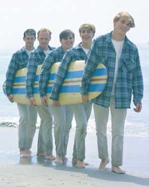 The Beach Boys Rock N Roll Image