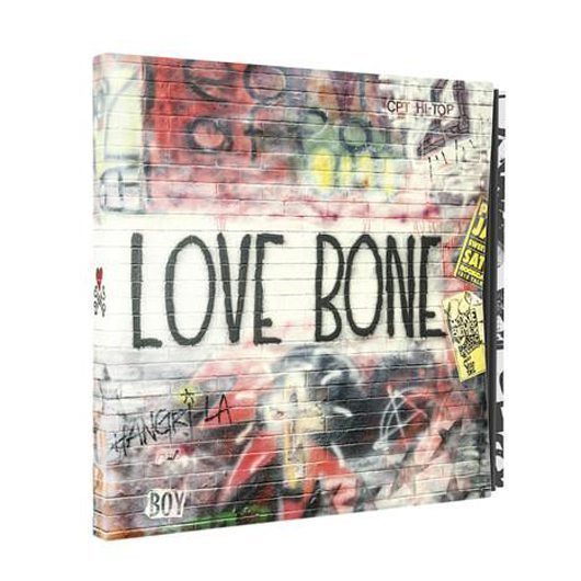 Mother Love Bone On Earth As It Stands Box Set - 530
