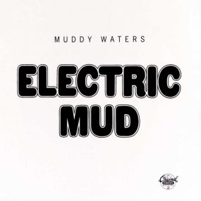 Muddy Waters Electric Mud