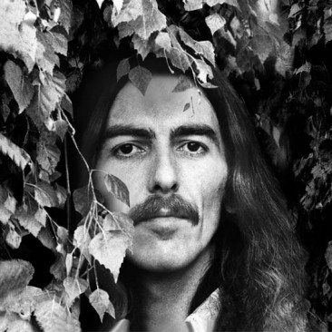 George Harrison: Album By Album