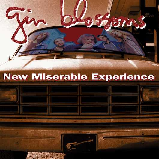 Gin Blossoms New Miserable Experience Vinyl Reissue