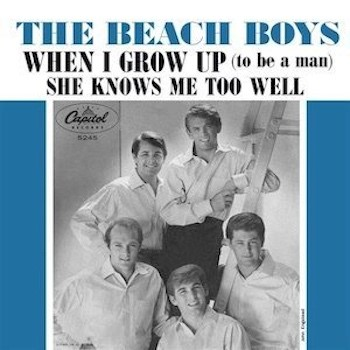 Beach Boys When I Grow Up Picture sleeve web optimised 350