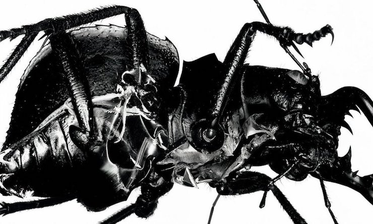 Massive Attack Mezzanine sleeve