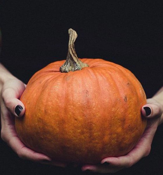 Best Halloween Songs Featured image web optimised 1000