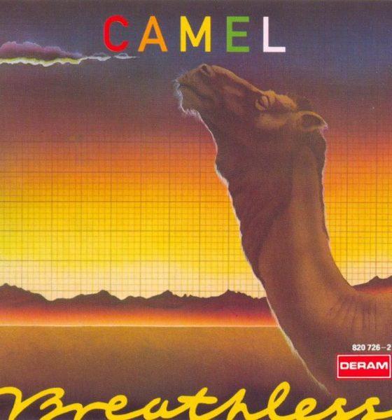 Breathless Camel