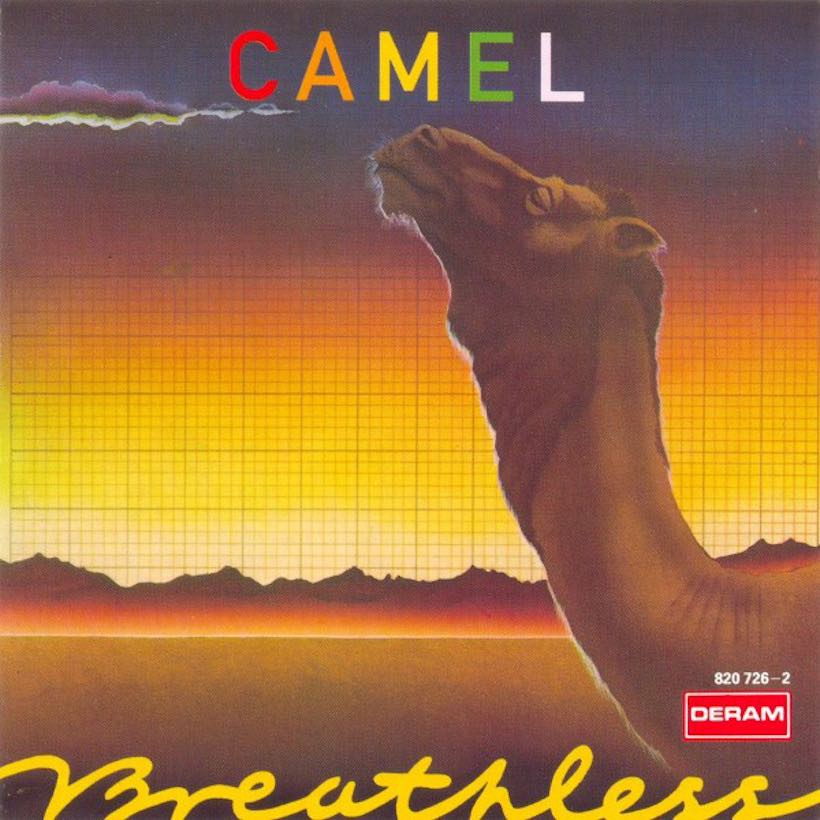 Breathless Camel