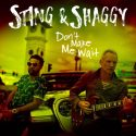 Sting Teams Up With Shaggy For Single 'Don't Make Me Wait', Album Due In April