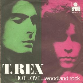 Hot Love T Rex