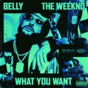 Watch The New Video For Belly's 'What You Want' Ft. The Weeknd