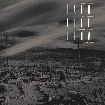 David Sylvian Rain Tree Crow Vinyl