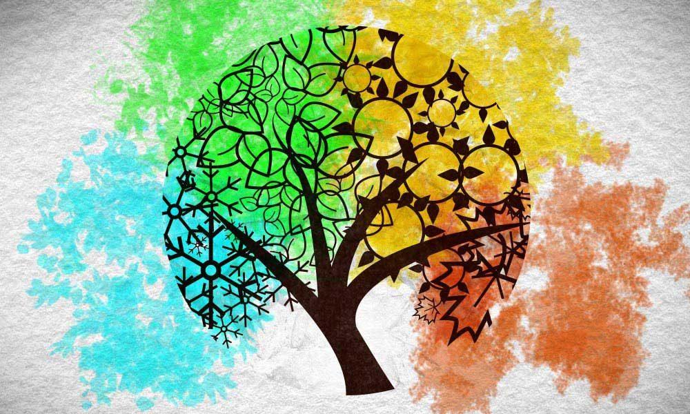 Vivaldi Four Seasons featured image of tree throughout four seasons