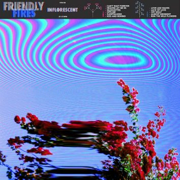 Friendly Fires Inflorescent Album