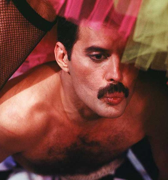 Freddie Mercury Press Image 1 Photograph by Peter Roshler COPYRIGHT Mercury Songs Ltd 1000