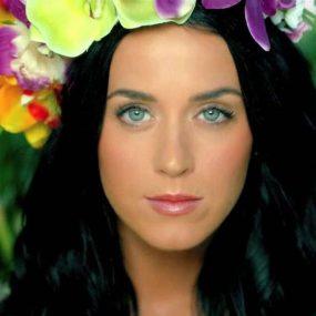 Katy Perry Roar Music Video
