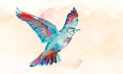 Vaughan Williams Lark Ascending - featured image of a lark