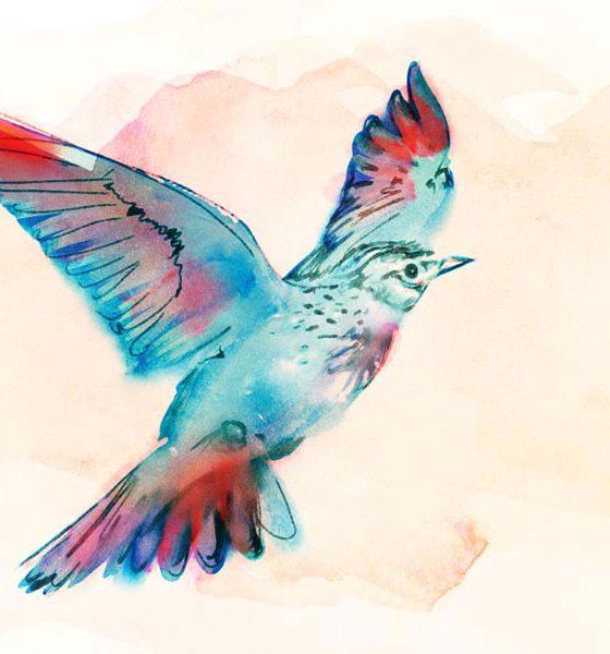 Vaughan Williams Lark Ascending - featured image of a lark