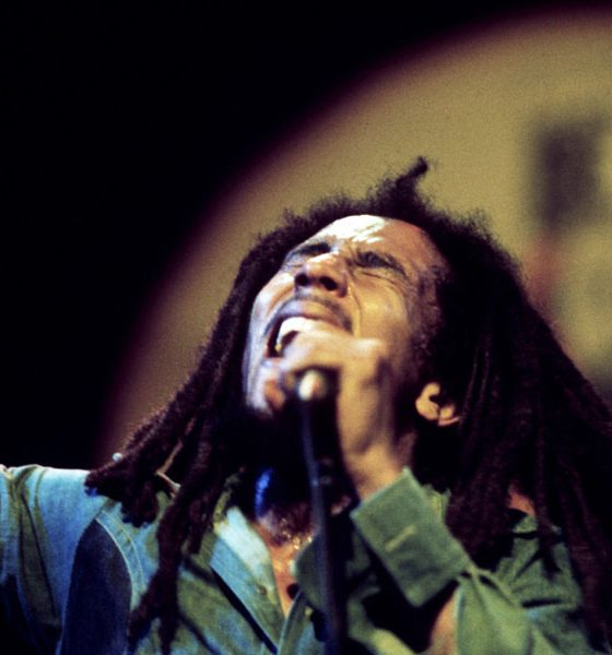 Bob-Marley-Punky-Reggae-Party-Legacy-Series