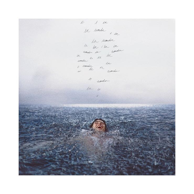 Best Pop Music Gifts - 19-Shawn-Mendes-Wonder