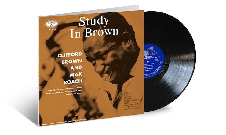 Brown Roach Study In Brown