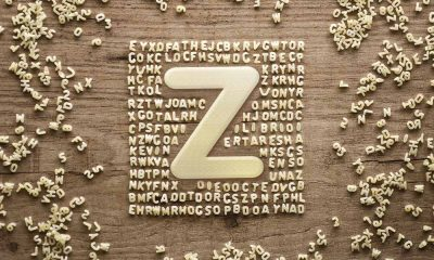 bands that start with the letter z