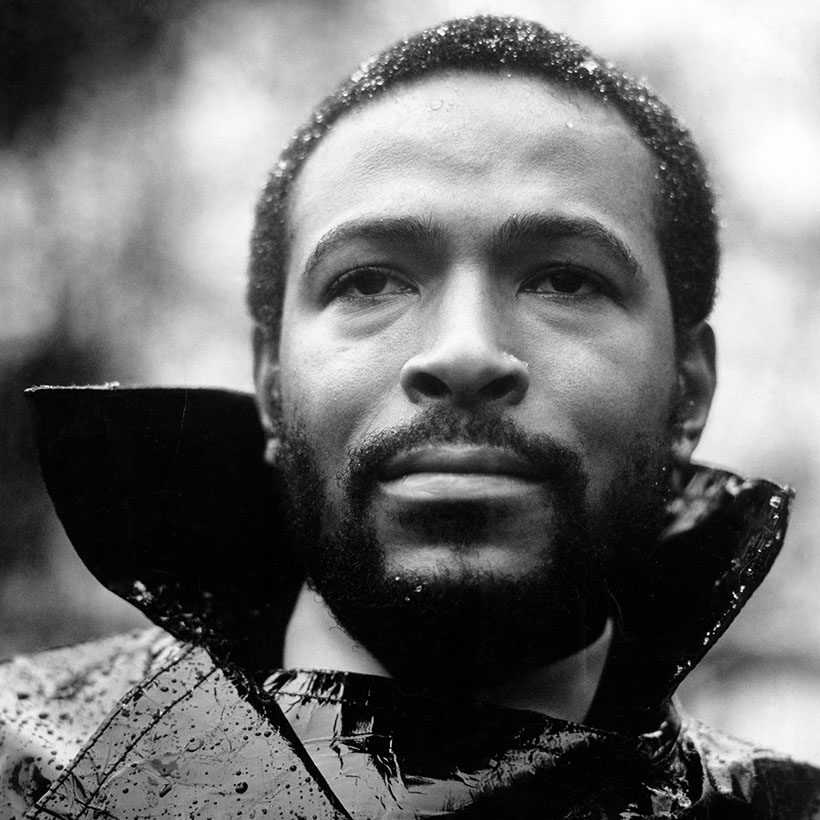 Marvin Gaye from the What's Going On Portrait Session