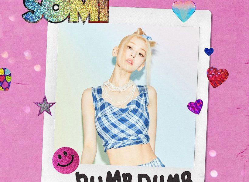 Somi-Dumb-Dumb